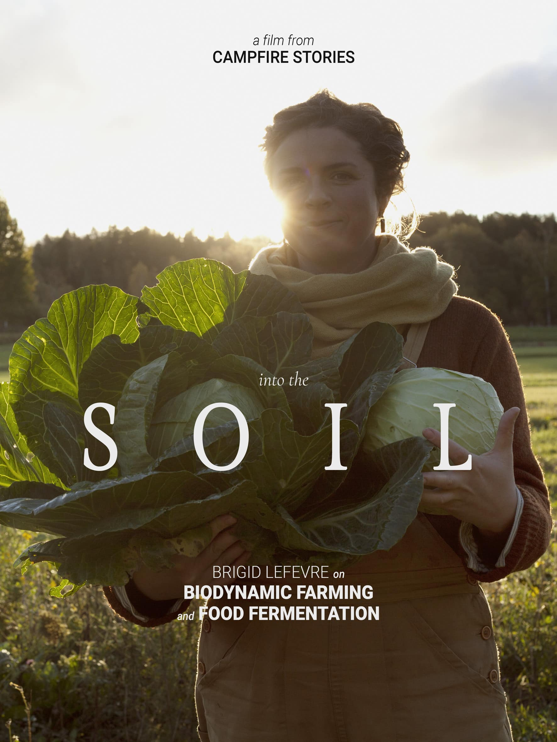 Soil poster small